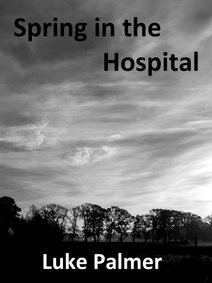 Spring in the hospital cover